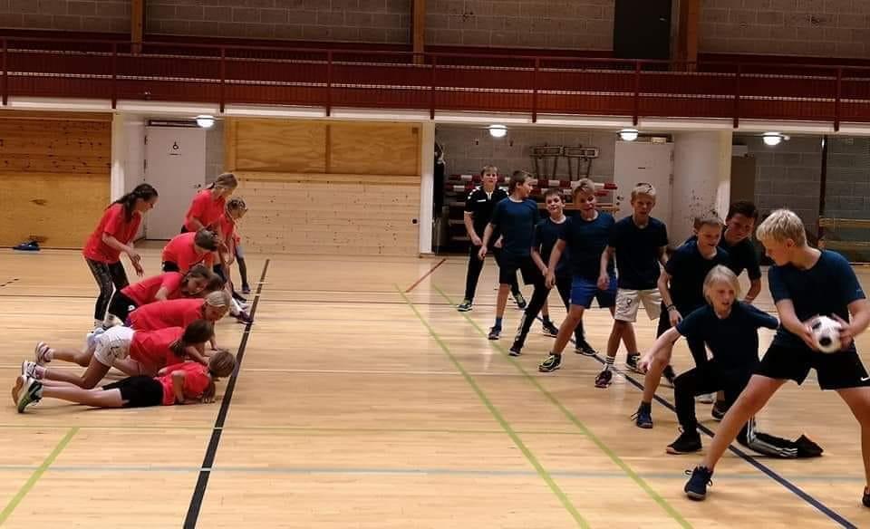 Ål handball